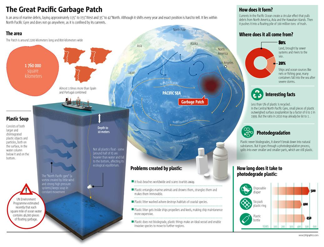 Infographic Student Examples